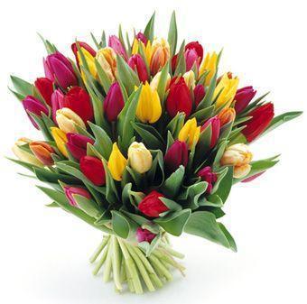 Przyjmę do pracy w kwiaciarni 603 914 615