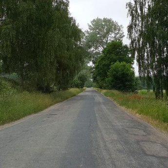 """Pobocza dróg na wioskach zapomniane? """"Wysoka trawa zasłania wszystko"""""""