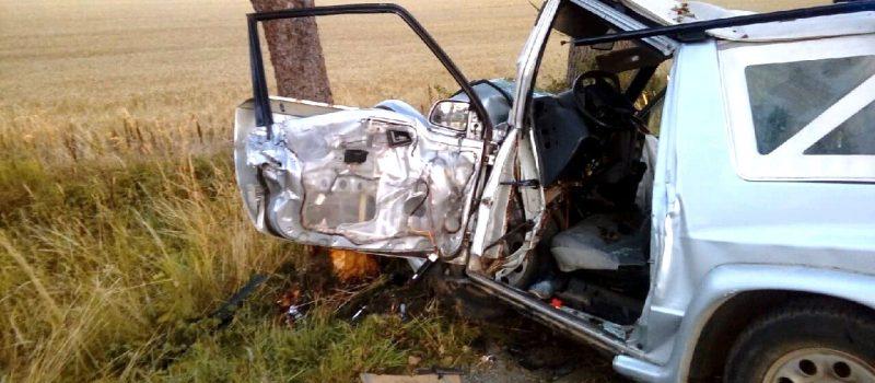 Kierowca Suzuki uderzył w drzewo. 25 - latek był pijany