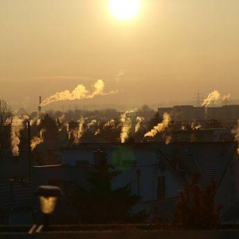 Czyste powietrze z firmą piTERN