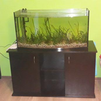 Akwarium 180l + całe wyposażenie