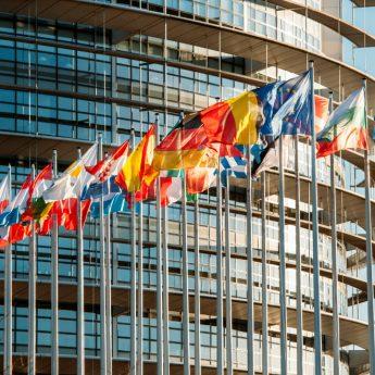 Wybory do Europarlamentu już w niedzielę. Zobacz na kogo możesz głosować