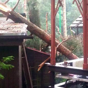 Strażacy walczą ze skutkami nawałnic. Powalone drzewa zniszczyły domki letniskowe