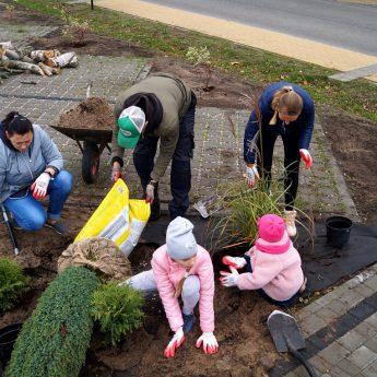 Finał akcji sadzenia drzewek w Dziwnowie