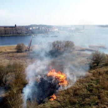 Pożar na żółcińskiej plaży. W akcji trzy zastępy straży pożarnej