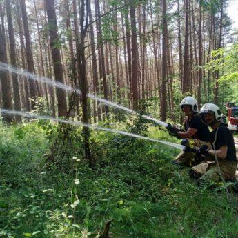 15 zastępów straży ćwiczyło walkę z ogniem w lesie!