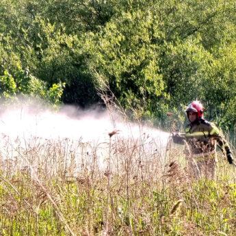 Podpalenie przyczyną pożaru na Orzeszkowej. Na miejscu dwa zastępy straży