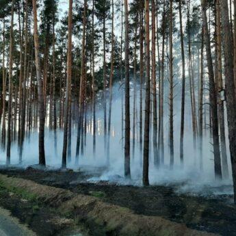 Zagrożenie pożarowe w lasach!