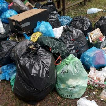 Urzędnicy przyłapali śmieciarzy. Magistra ostrzega kolejnych amatorów podrzucania śmieci do lasu