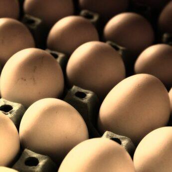 Salmonella na skorupkach jajek w Biedronce. GIS ostrzega