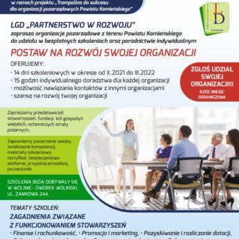 Szkolenia i poradnictwo dla organizacji pozarządowych